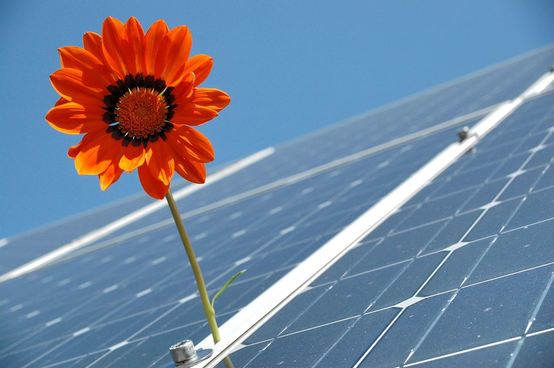 Erneuerbare Energien sind im Trend