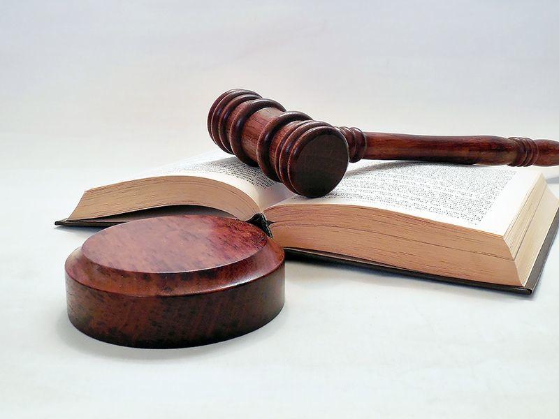 Urteil: Holzfäller nicht auf Betriebskosten umlegbar